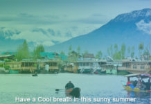Have a Cool breath in this sunny summer