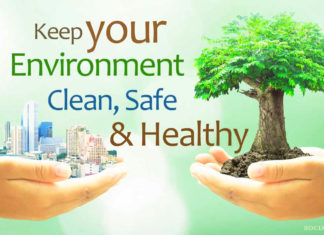 What effects can the Environment have on Health?