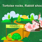 Tortoise rocks - Rabbit shocks!