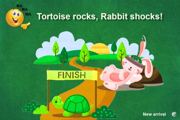Tortoise rocks - Rabbit shocks!