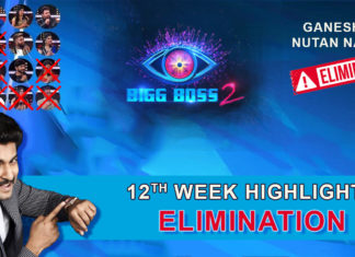 Bigg Boss 2 Telugu 12th Week Elimination Highlights