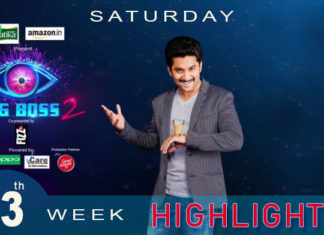 Bigg Boss 2 telugu 13th week Saturdays Episode Highlights