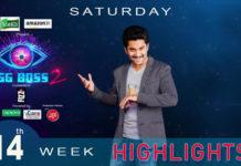 Bigg Boss 2 Telugu 14th week highlights