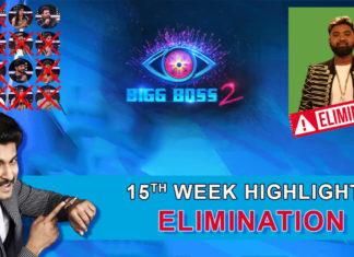 Bigg Boss 2 telugu 15th week elimination highlights